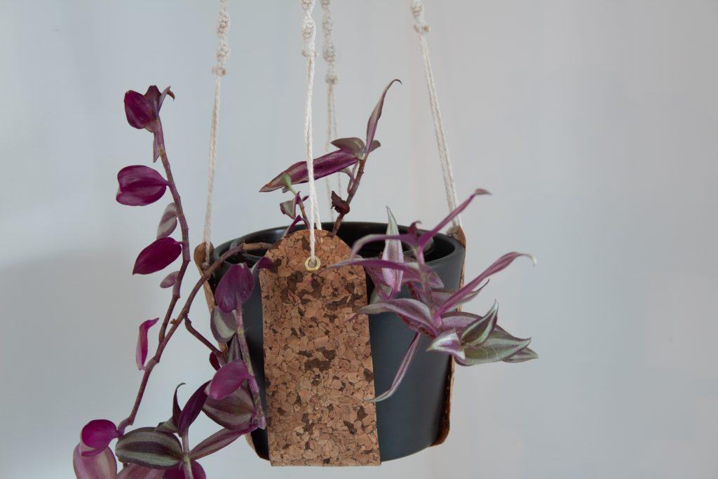 DIYs mit: Kork und Sandra und Saskia, Makramee-Kork-Blumenampel mit Anleitung zum nachmachen