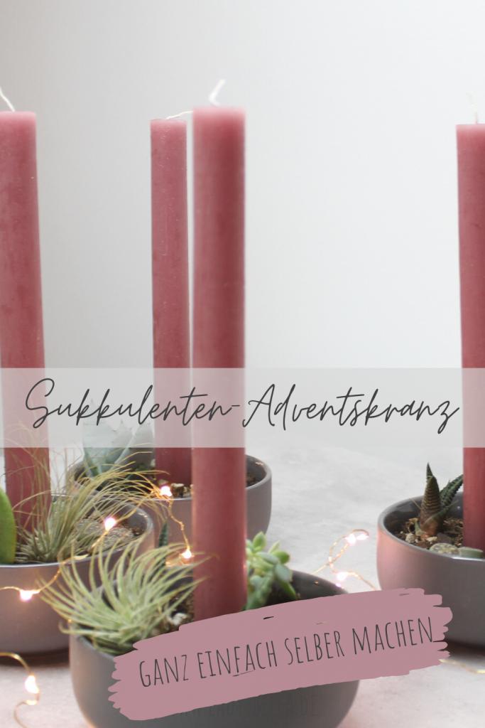 DIY Sukkulenten-Adventskalender einfach selber machen