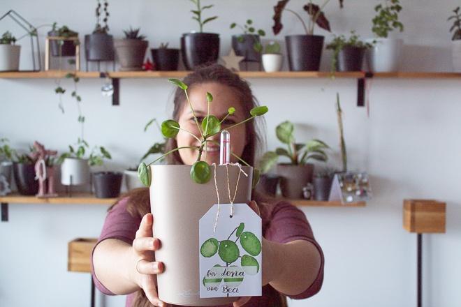 Werbung: Wichtelgeschenk mit dem Pflanztopf von Lechuza