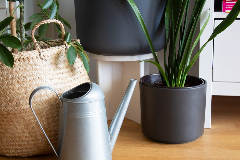DIY Pflanzenhocker mit remmers Öl-Farbe Lady Bella
