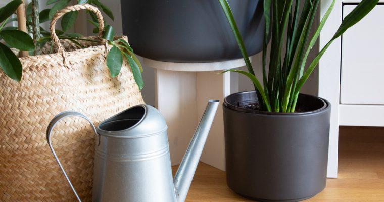 DIY-Pflanzenhocker mit Remmers Öl-Farbe [eco]