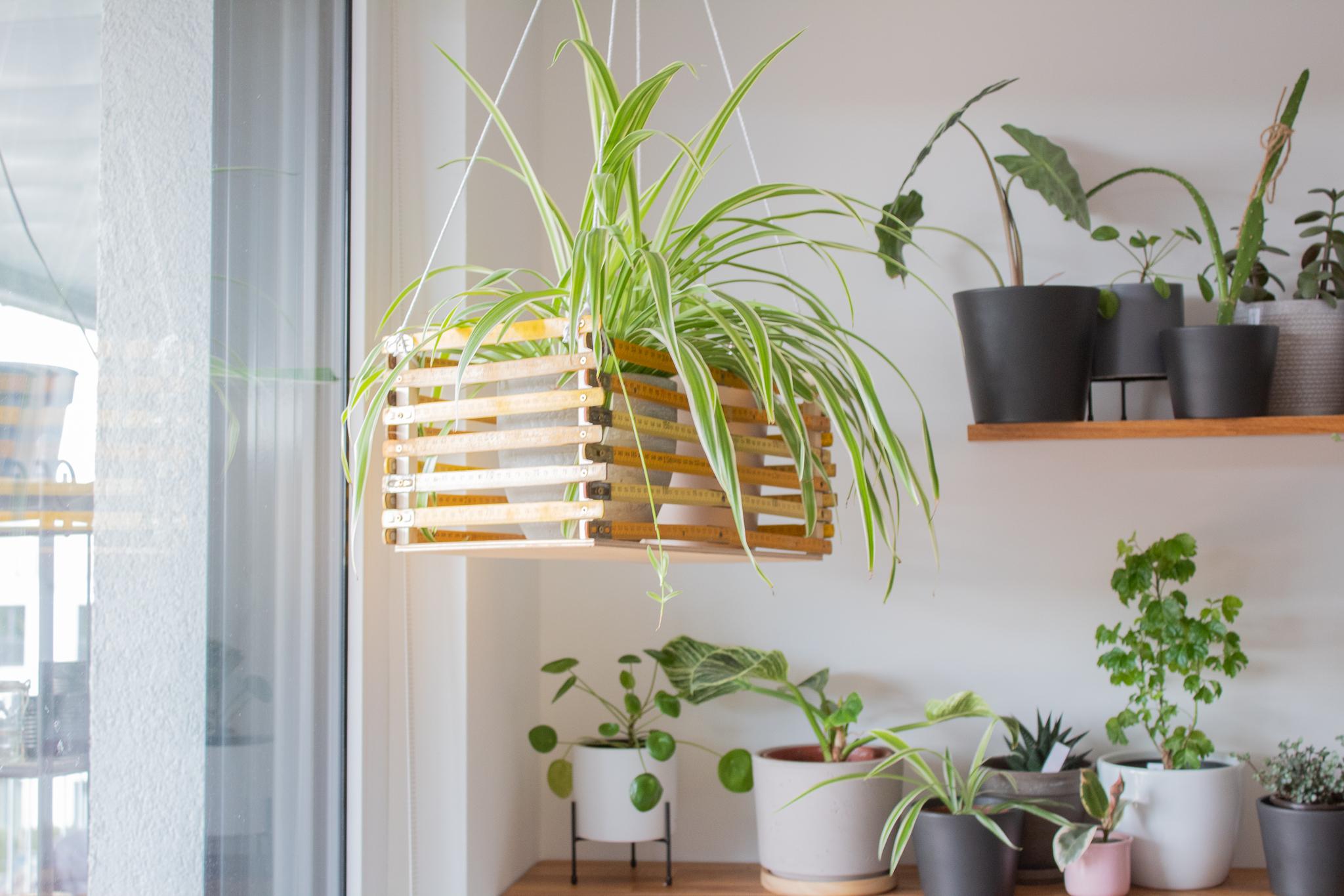 DIY-Zollstock-Blumenampel selber basteln