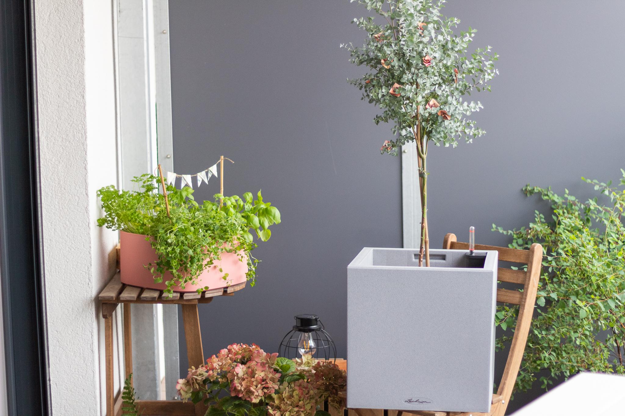 Geldgeschenk zur Hochzeit – Faltanleitung für Geldblumen im Eukalyptus